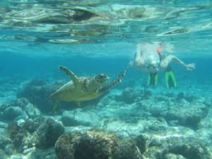 Развлечения на Мальдивах: с маской и трубкой