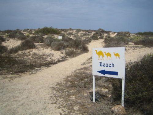 Дорога к пляжу Фуэртевентуры - Корралехо