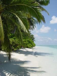 Перелет на Мальдивы стоит того, чтобы увидеть рай на земле